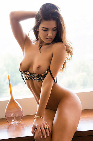 Jessica Ashley Sexy Brunette Playboy Playmate